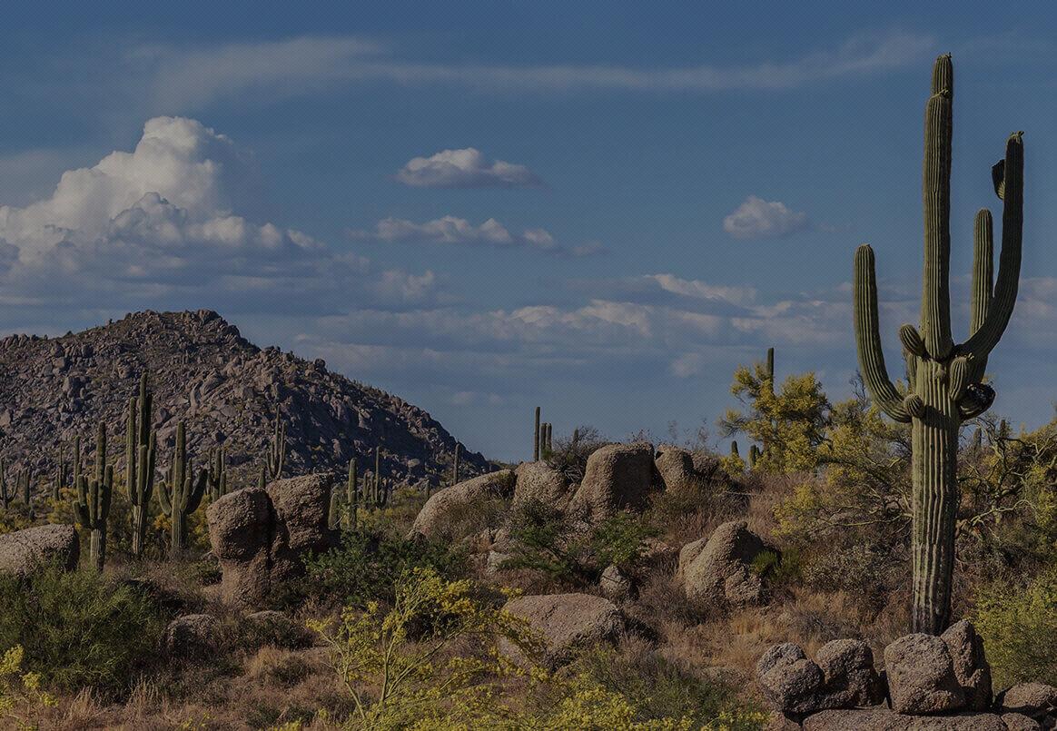 Divorce Lawyer in Scottsdale Arizona