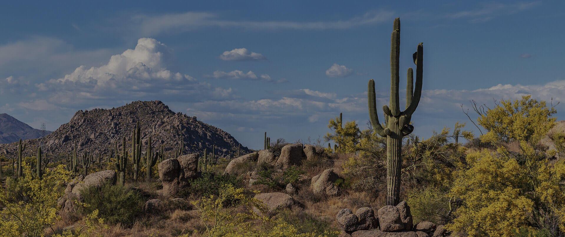 Divorce Attorney in Scottsdale Arizona